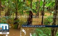 Farms In Thiruvalla Taluk Get Waterlogged; Crops Damaged