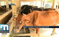 Dist Livestock Farm In Vattiyoorkavu Constituency Demands For Adequate Facilities