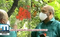 Minister VS Sunil Kumar's House A Visual Treat With Jade Vine Flowers