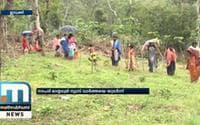 44 Families Residing In Idukki's Landslide Prone Area To Be Rehabilitated; Mathrubhumi News Impact