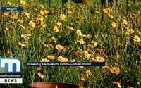 Kottakkunnu Tourism Park To Be Opened Today